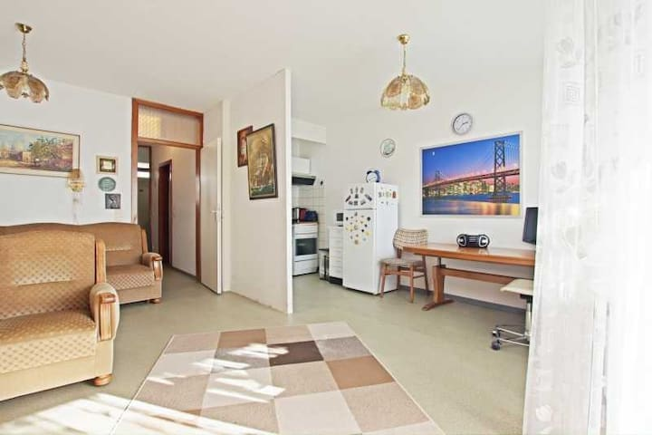 2 Room Apartment | ID 5159 | WiFi