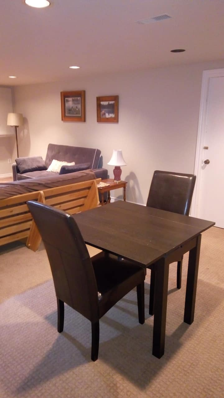 Quiet one bedroom basement suite, close to OPG.