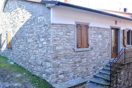 Apartment in Fresciano, Badia Tedalda (Arezzo)