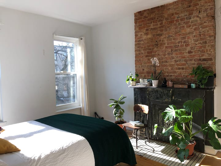 Brooklyn Sunny Clean and Modern in Historic Home