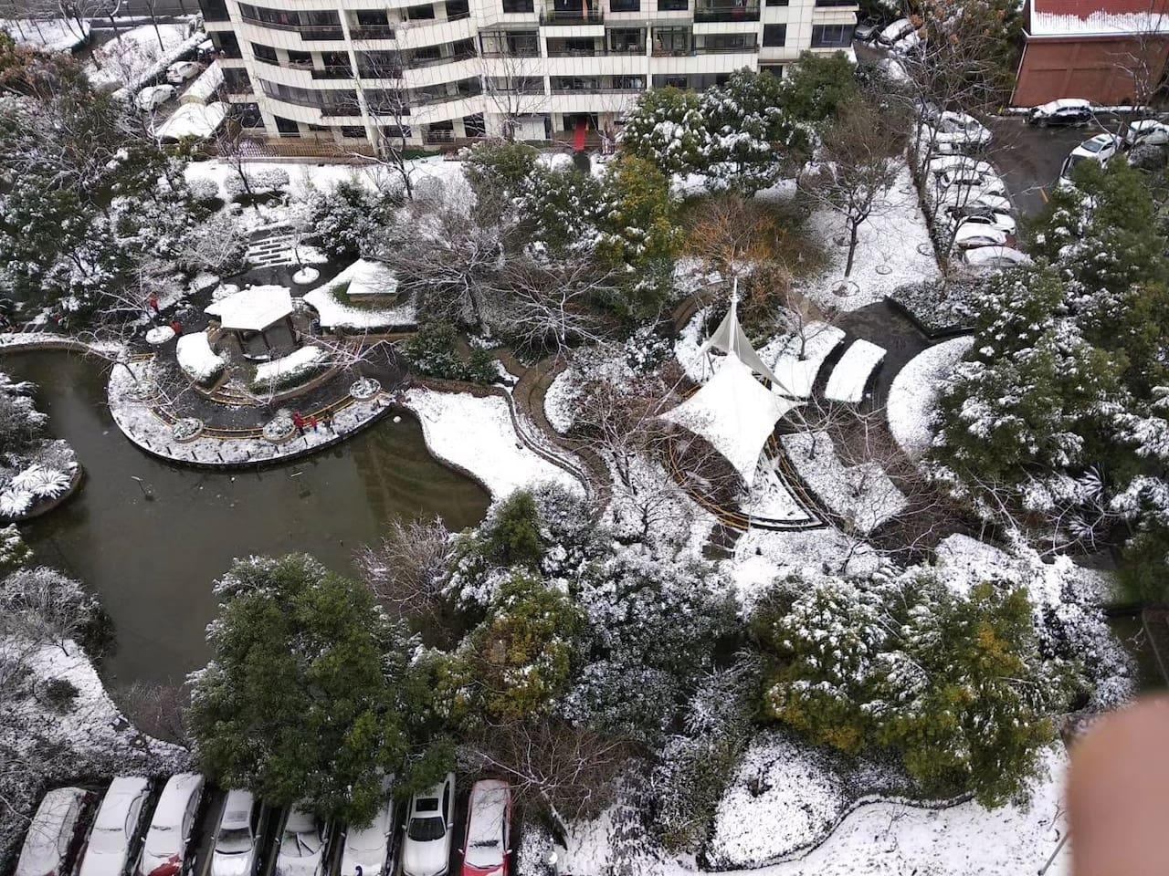 窗外小区花园的雪景