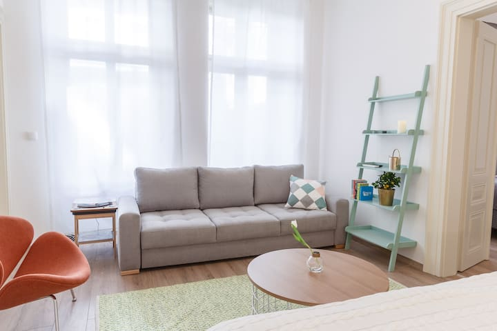Apartment near to Wenceslas Square with Netfilx