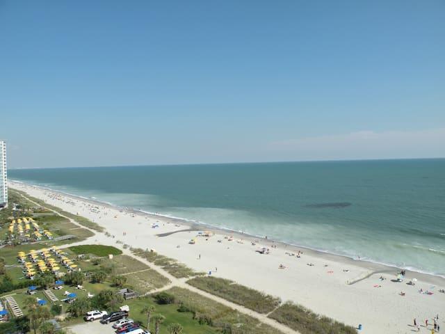 12th Floor Direct Ocean Front Great Views !