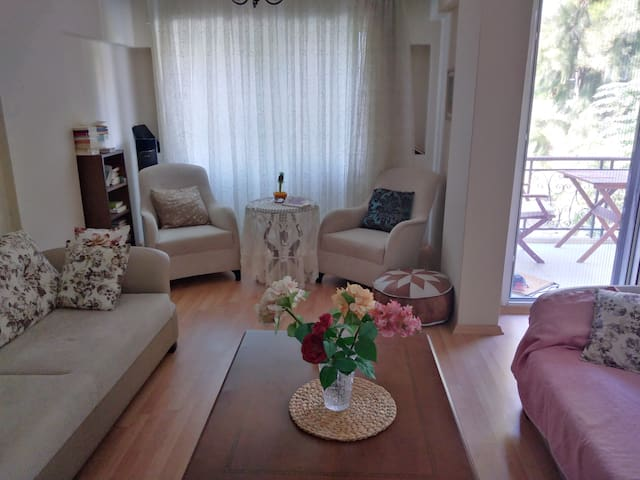 Central, clean & comfortable apt in İzmir