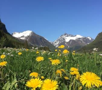 Stor enebolig blandt vakre fjell - Ørsta