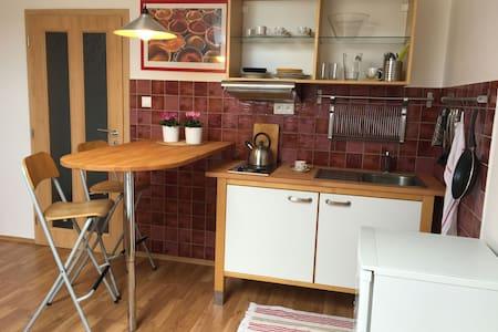 Attic lovelly flat - Apartment