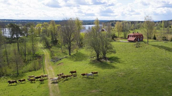 Villa Näs - modernt boende i lantlig miljö