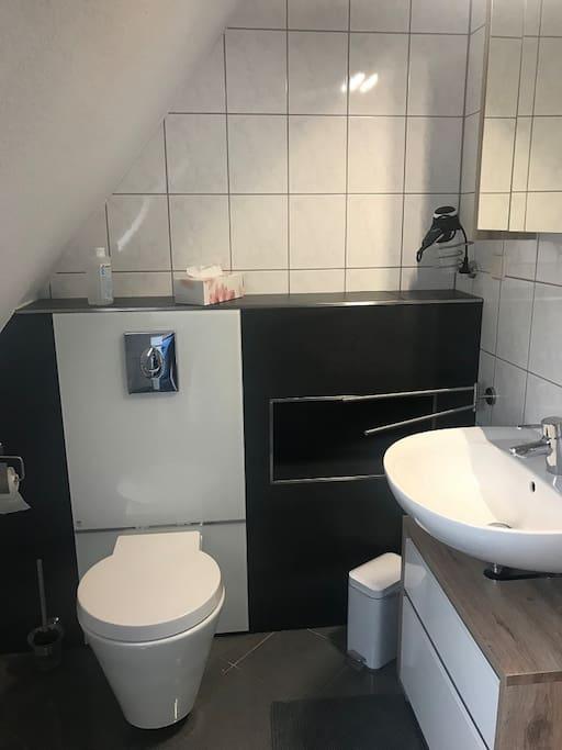 Hier sieht man das WC und das Waschbecken
