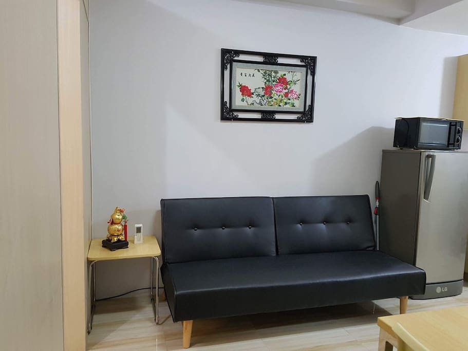 Living room area with sofa bed