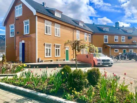 Nyoppusset leilighet i Sortland Sentrum