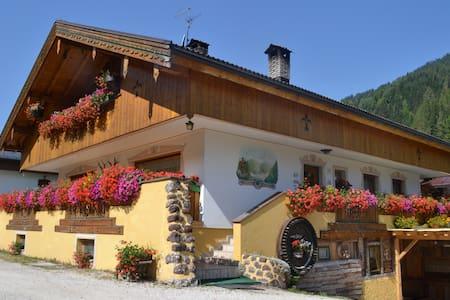 Casanova nelle Dolomiti