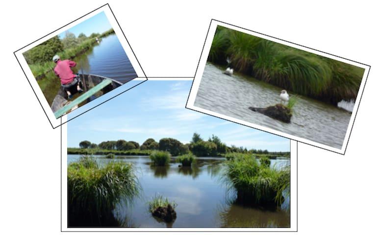 Maison au calme _ Parc naturel régional de Brière