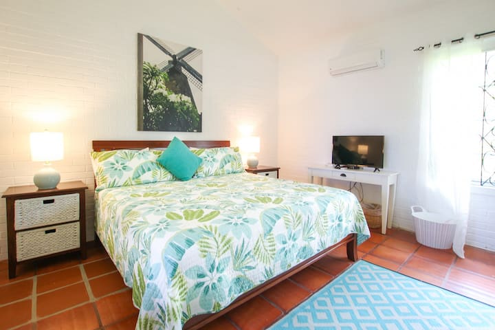 The second bedroom with a king bed, air-conditioning, TV, and ocean views