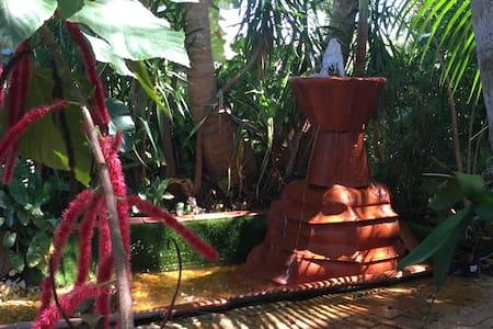Tropic Cove - Wilton Manors