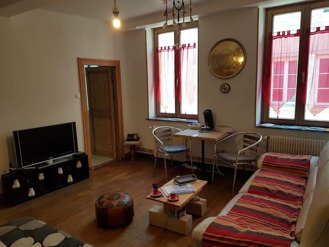 studio quip metz centre proche gare pompidou appartements louer metz grand est france. Black Bedroom Furniture Sets. Home Design Ideas