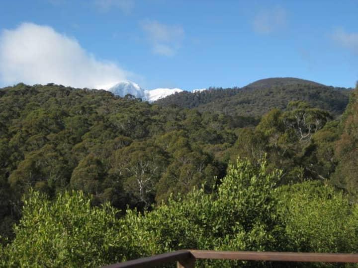 Moonlight Ridge Chalet -Open for regional bookings