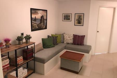 Lovely 2 bedroom apartment in 108 Reykjavik - レイキャヴィーク
