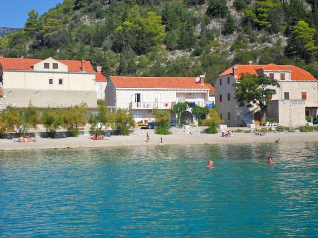 1-room apartment 16 m² JELKA in Trstenik