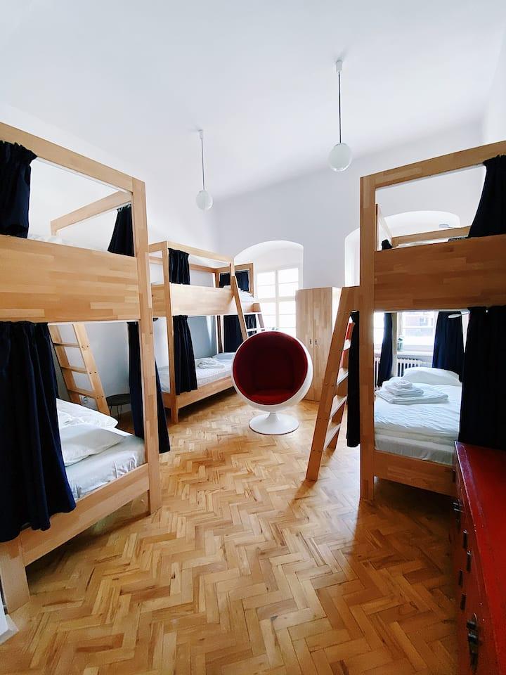 Hlavna100, Shared room - female only 6 beds