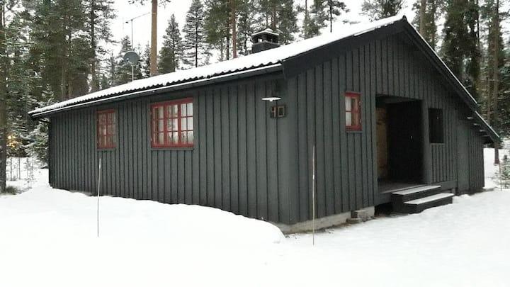 Trysil/Ljørdalen Hoelskogen