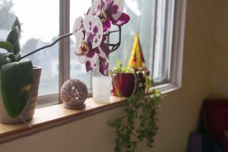 Zen Yoga Flat in 4 1/2 Sunny Apartment - Longueuil - Lägenhet