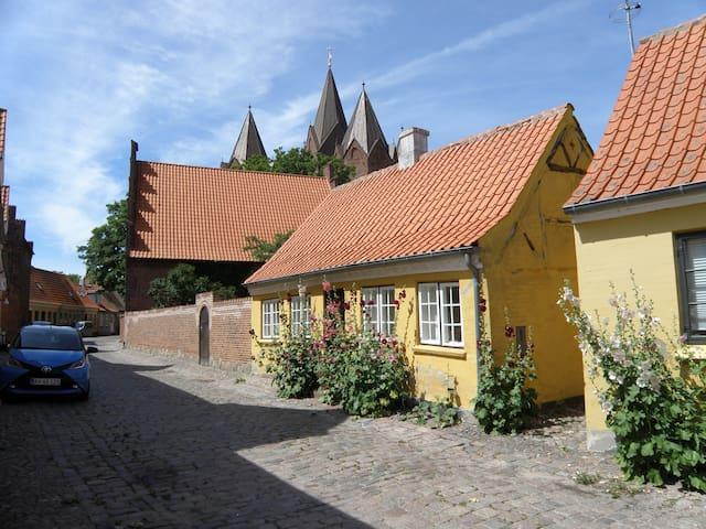 Charmerende lille hus i Kalundborgs Højby.