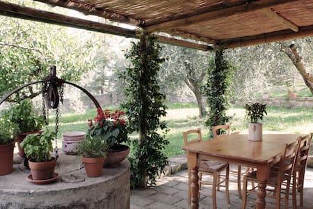 The house of AnnaVittoria - Monticchiello
