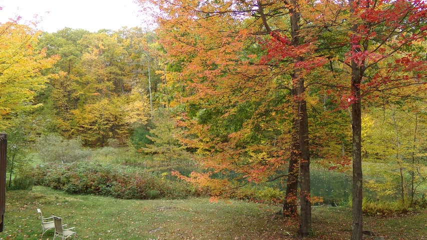 Putney Mountain Sanctuary