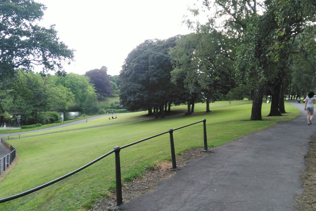 1 minute walk to the beautiful Phoenix Park!