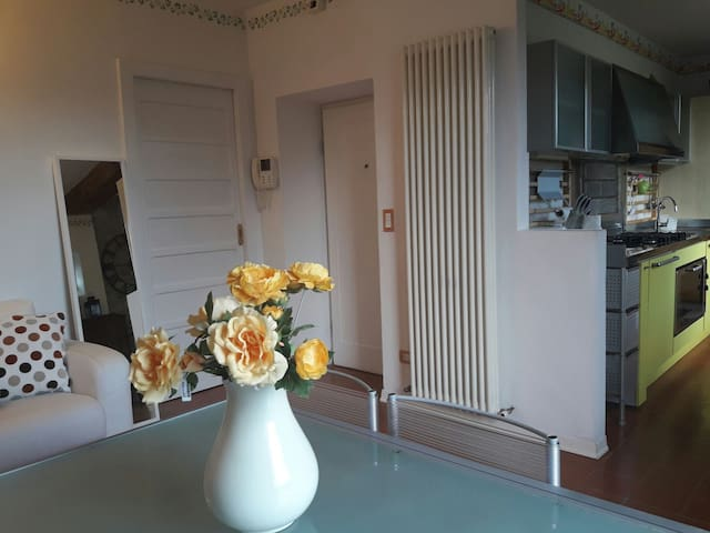 Charming apartment - internet wifi  - Solignano - Appartement