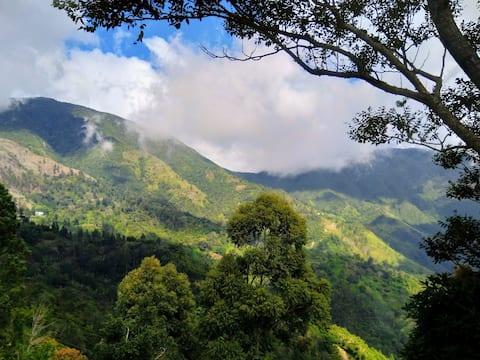 J&L Mountainside Retreat - Groene Kamer (Privé)