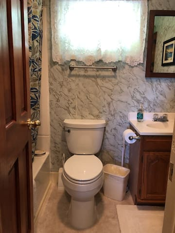 Full bathroom with bathtub and shower combo includes shampoo and bath soap