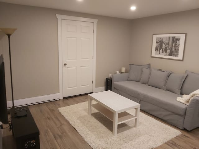 """Living room with 42"""" Hi-Def TV, digital cable, Netflix and HDMI cable for your convenience.  The sofa pulls out into a queen sized bed and has extra pillows, sheets and a duvet located underneath."""