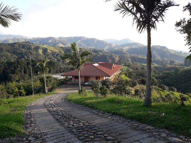 Finca Buenavista