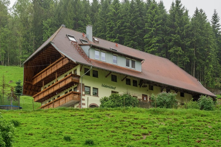 Luxurious Farmhouse near Forest in Mühlenbach