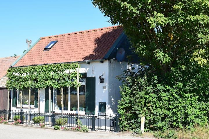 Gemütliches Ferienhaus in Schoondijke mit Terrasse