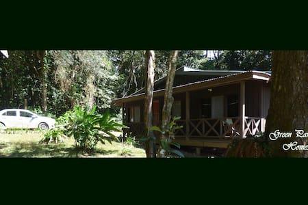 """""""La Perezosa"""", (The Sloth), a Green Paradise Home. - Monteverde"""