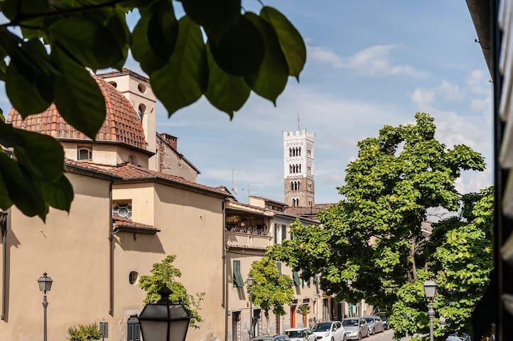 Appartamento centro storico Matteo