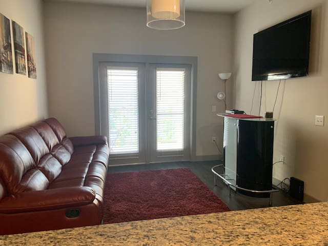 Modern 1BR Apt Relaxed Feng Shui w/Comp Champagne