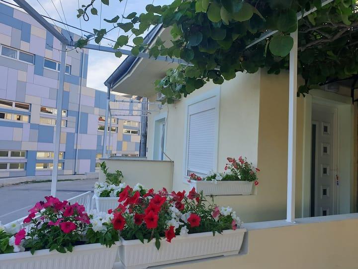 Apartman Enci: Near the marina Kornati and the sea