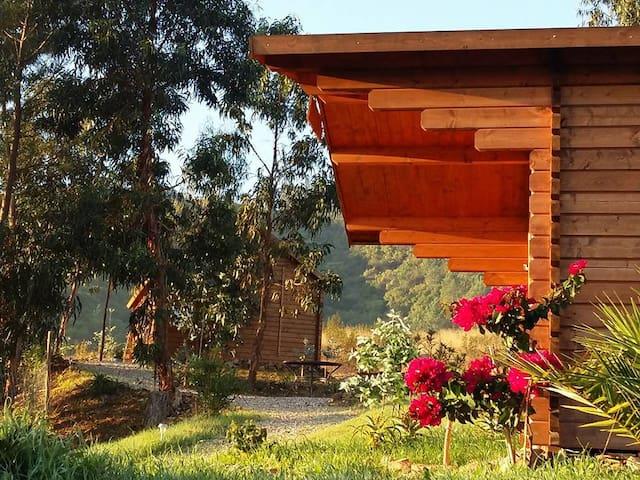 Casa Calma rustig gelegen middenin de natuur