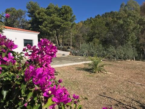 Casa Tesorillo Village authentically Andalusian.