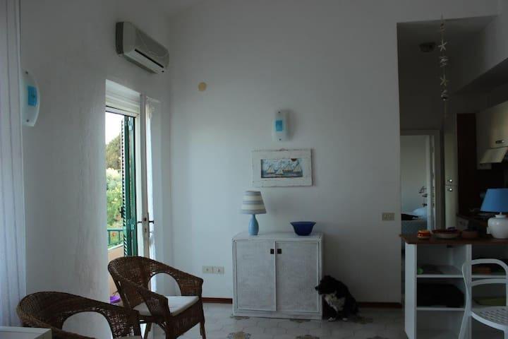 appartamento sul mare di ansedonia - Ansedonia - Wohnung