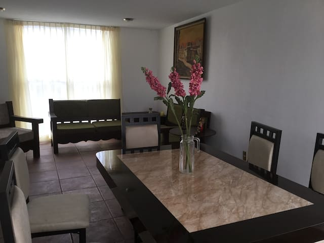 Great apartments in Mexico City