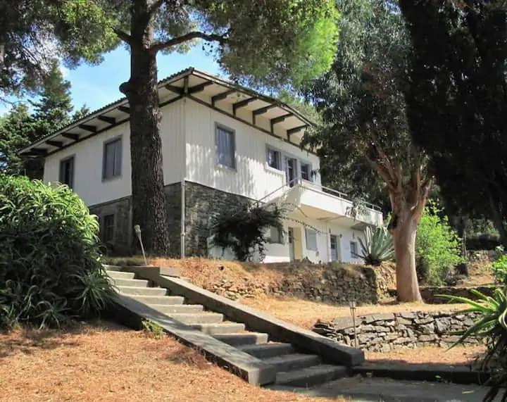 Domaine de Stazzona, villa 6 personnes avec vue