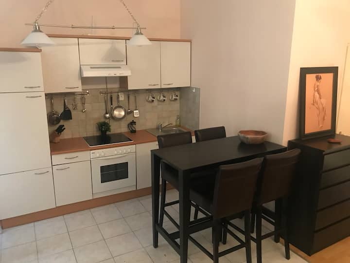 Studio apartment steps away from the Danube