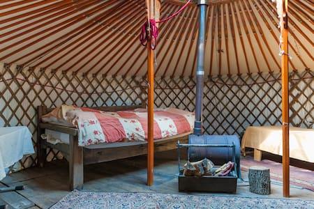 Yurt met natuurgebied de moerputten als tuin