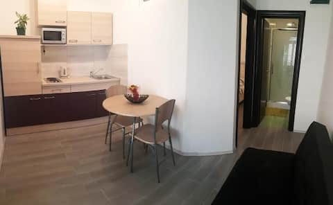 Small modern apartment for two persons