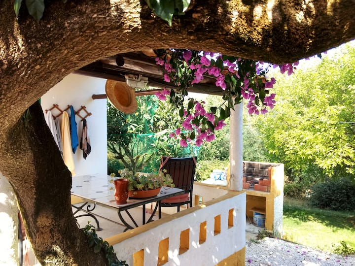 Bougainvillea: lovely cottage in the countryside