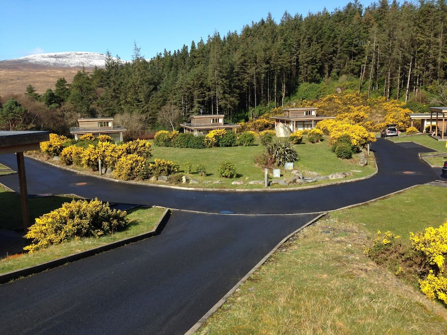 Ten houses set in a cul de sac providing a wonderful space for children to play and meet new friends.
